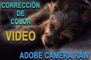 Corrección de color video Adobe Camera Raw