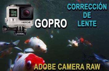 corrección de lente Gopro