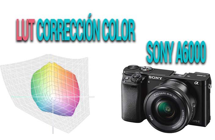 LUT corrección color Flat Sony A6000